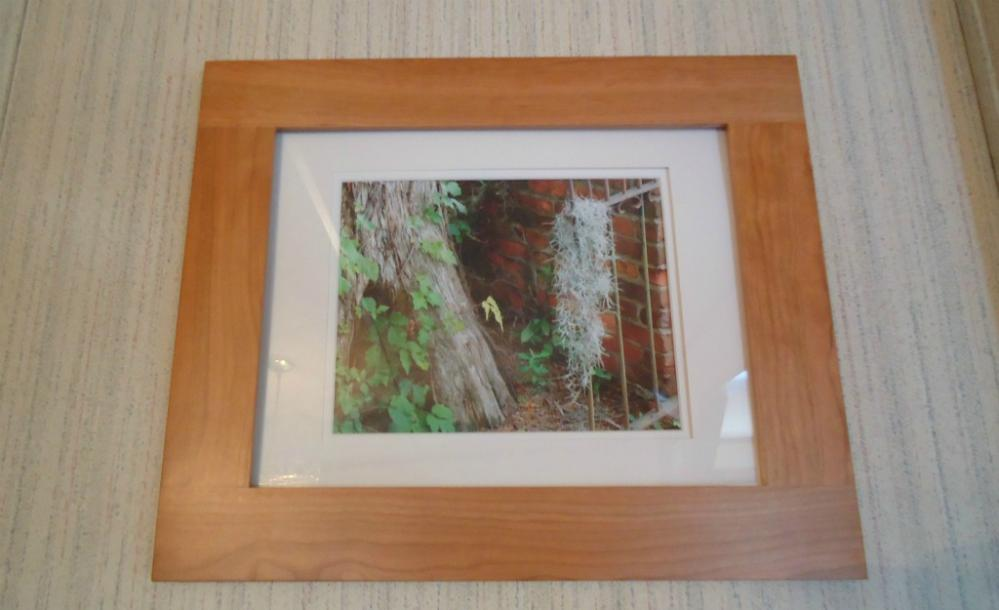 Lost Moss Wood Framed and Ivory Matted Original Photograph